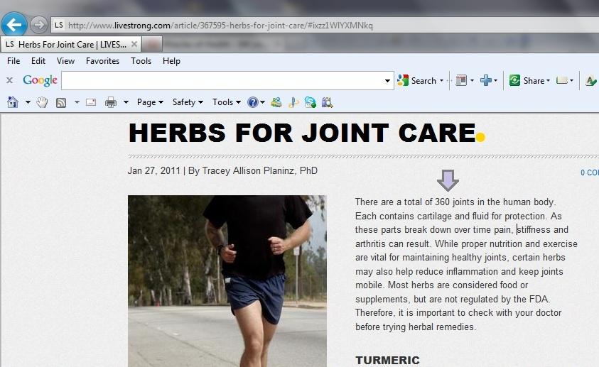 360_joints_in_human_body_3.jpg