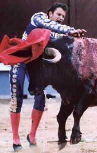 bullfight23.jpg (13089 bytes)