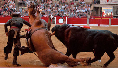 bullfight48.jpg (44991 bytes)