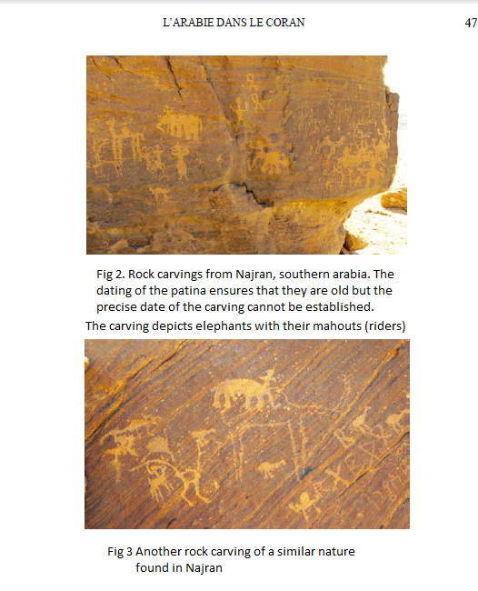 fig 2 and 3 abraha elephants