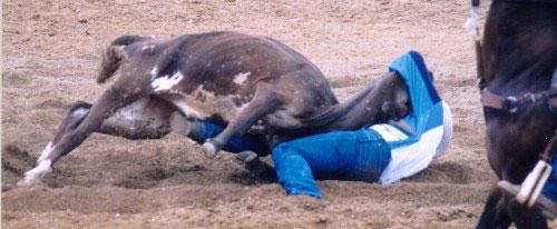 rodeo16.jpg (32818 bytes)