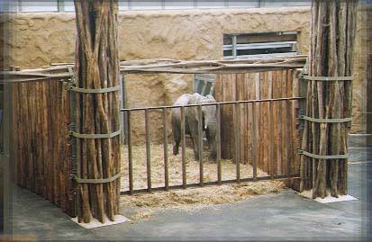 zoo.jpg (31121 bytes)